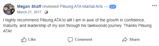 Adult 1, Pilsung ATA Martial Arts