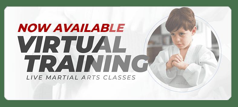 VIRTUALPOPUPSPARK.1.1, Pilsung ATA Martial Arts